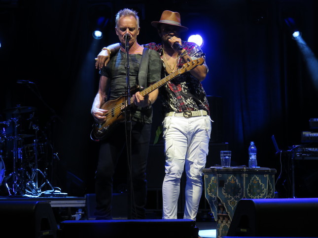 foto Sting Shaggy