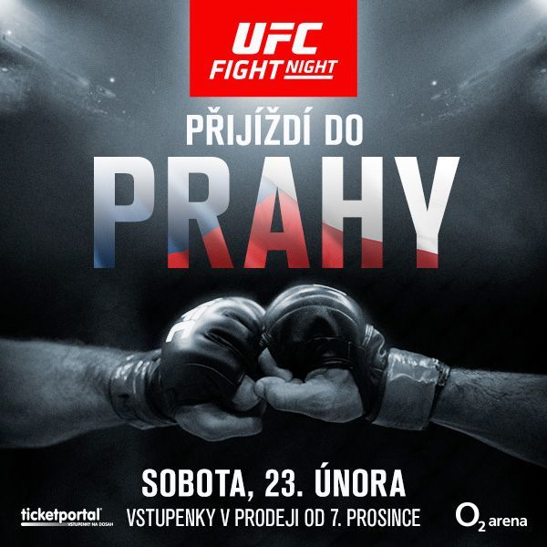 logo UFC FIGHT.jpg